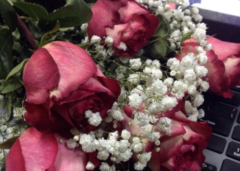 Розы в огне. В Смоленской области в цветах обнаружен трипс