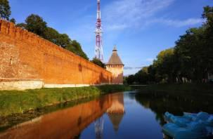 Суточный прирост числа заразившихся коронавирусом в Смоленске составил 10 человек