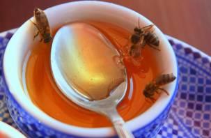 Опасность для человека. Отравленные пестицидами пчелы могут заразить мед
