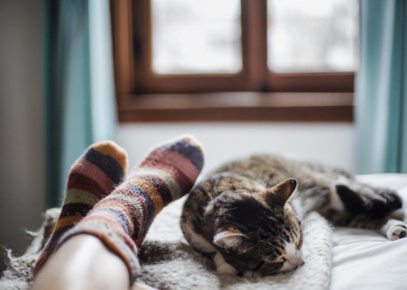 Медики рассказали, как носки могут помочь вылечить простуду