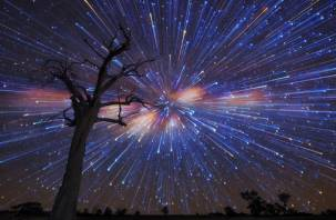 Россияне увидят самый яркий звездопад лета. Что говорят астрологи?