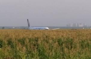 Жесткая посадка самолета в Подмосковье. Пострадали дети из Смоленска