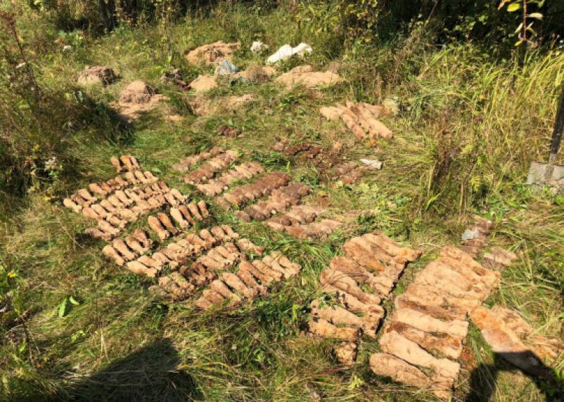 Сотрудники ФСБ нашли в Рославльском районе 319 боеприпасов