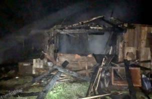 Животные спасены. Три тонны сена сгорело в Хиславичском районе