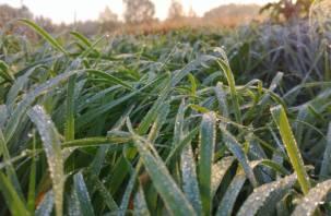 Гидрометцентр: в ряде регионов России ожидаются заморозки