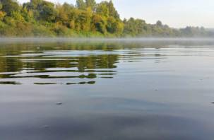 В Печерске в озере нашли тело мужчины
