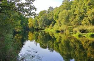 Экологи назвали самые чистые и грязные регионы России