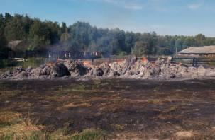 В Шумячском районе полыхали 30 тонн сена