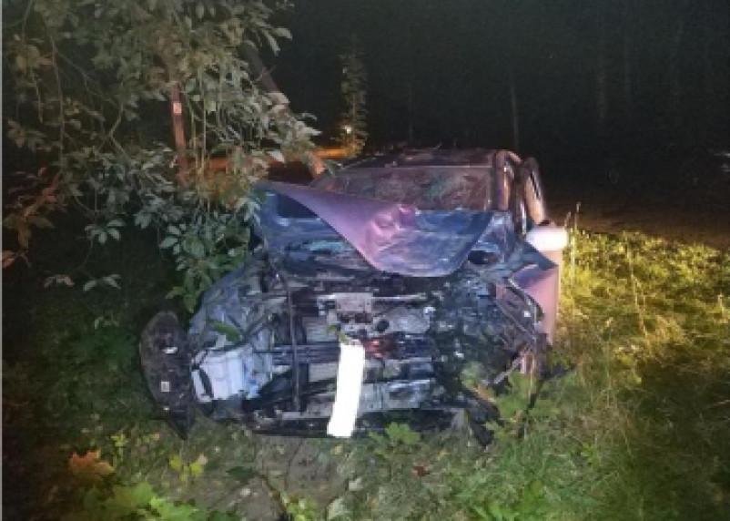 В Смоленском районе иномарка протаранила знак и врезалась в дерево. Водитель госпитализирован