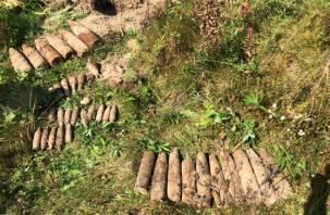 Почти 1500 боеприпасов времен войны уничтожили в Смоленской области