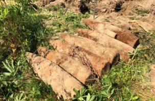 Восемь снарядов времен войны уничтожили в Смоленской области