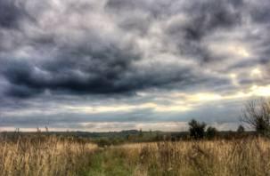 В Смоленской области рабочая неделя начнется с дождей
