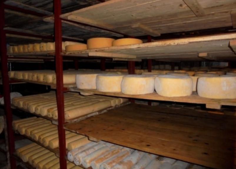 Смоленское молочное предприятие поймали на нарушениях