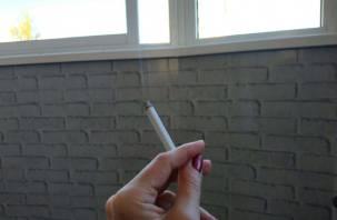 Россиянам запретили перевозить более 200 сигарет