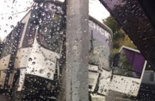 Скорая и МЧС на месте. В Заднепровье автобус протаранил дерево