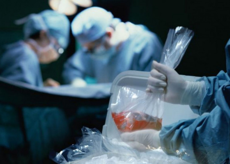 Некровным родственникам могут разрешить быть донорами внутренних органов