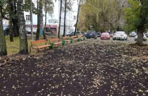 Странный мини-сквер появился в центре Смоленска и уже вызвал критику горожан