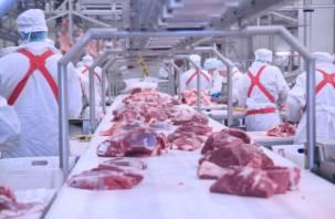 Просрочка и неизвестное происхождение мяса. «Меркурий» рассекретил смоленский мясокомбинат