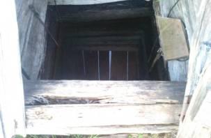 Жители смоленской деревни вынуждены пить тухлую воду из колодца