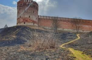 Блогер-путешественник предложил сжечь чиновников на костре за смоленскую крепость