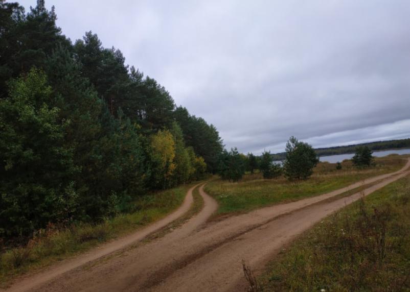 В Смоленской области пропала 60-летняя женщина