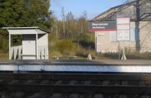 Смолянин заблокировал путь поездам