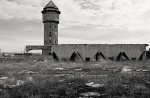Не нашли в Смоленске. Пользователи соцсети ошиблись с местонахождением «бетонозавра»