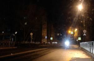 В Смоленске дерево рухнуло на дорогу