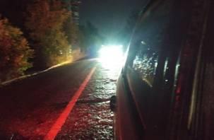 Вылетел в кювет от удара. В Сафоновском районе водитель ВАЗа пострадал в ДТП с иномаркой