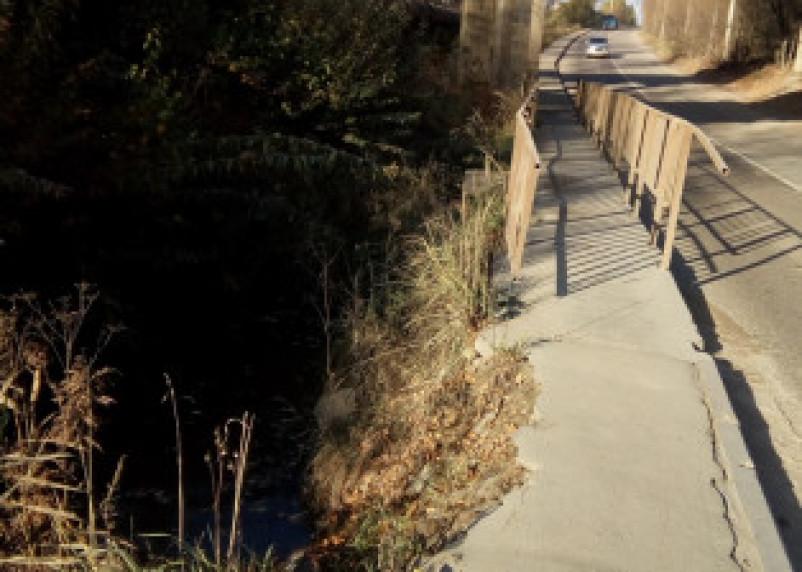 Смоляне жалуются на опасный тротуар