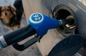 Росстат: бензин больше всего подорожал в Белгороде и Смоленске