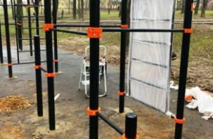 В парке 1100-летия Смоленска установили оборудование для реабилитации инвалидов
