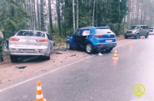 Смолянин-офицер протаранил легковушку. Семеро пострадавших, включая детей