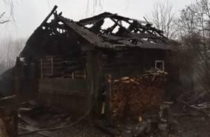При пожаре в Велижском районе погиб 58-летний мужчина