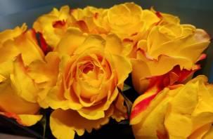 В Смоленскую область пытались ввезти розы и гвоздики с трипсом