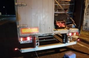 14 тонн перца пытались ввезти на Смоленщину под видом лекарств