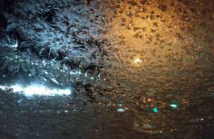 В Смоленской области ожидаются заморозки до -12 градусов