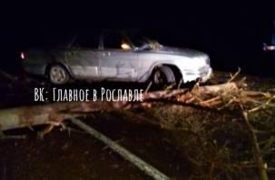 В Рославльском районе дерево стало причиной серьезной аварии