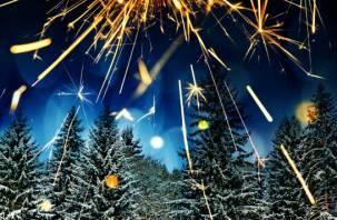 Новый год без салютов. У любителя фейерверков вынесли из гаража пиротехнику на полмиллиона рублей