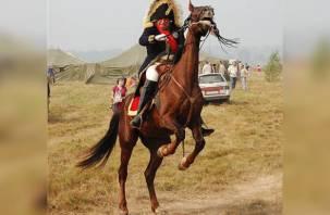 Реконструкторы рассказали, как Соколов пропорол бок лошади шпорой