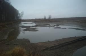 Река Гжать обмелела