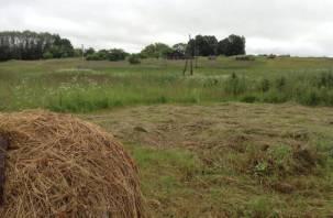 Почти 230 миллионов рублей помогут осовременить облик нескольких смоленских сёл и деревень