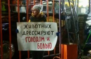 В Смоленске активисты вышли на пикет против передвижного цирка