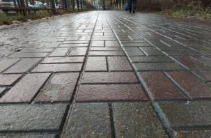 В Смоленской области объявили «желтый» уровень опасности из-за гололеда