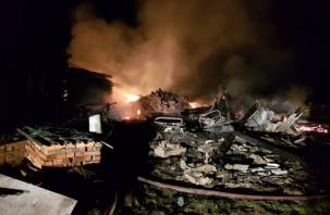 В Вяземском районе при пожаре погибли два человека