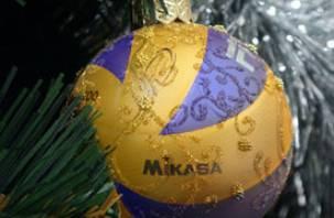 В Смоленске пройдёт чемпионат по волейболу