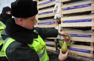 Документы отсутствовали. В Смоленск не пропустили 30 тонн груш