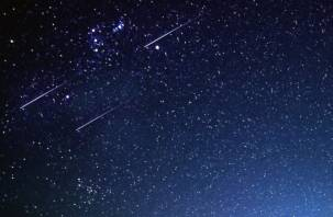 Изменит судьбы людей. Астрологи рассказали, чего ждать от главного звездопада года