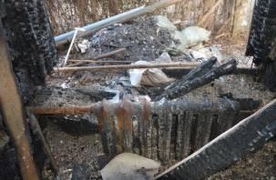 В Хиславичах в горящем доме погиб мужчина