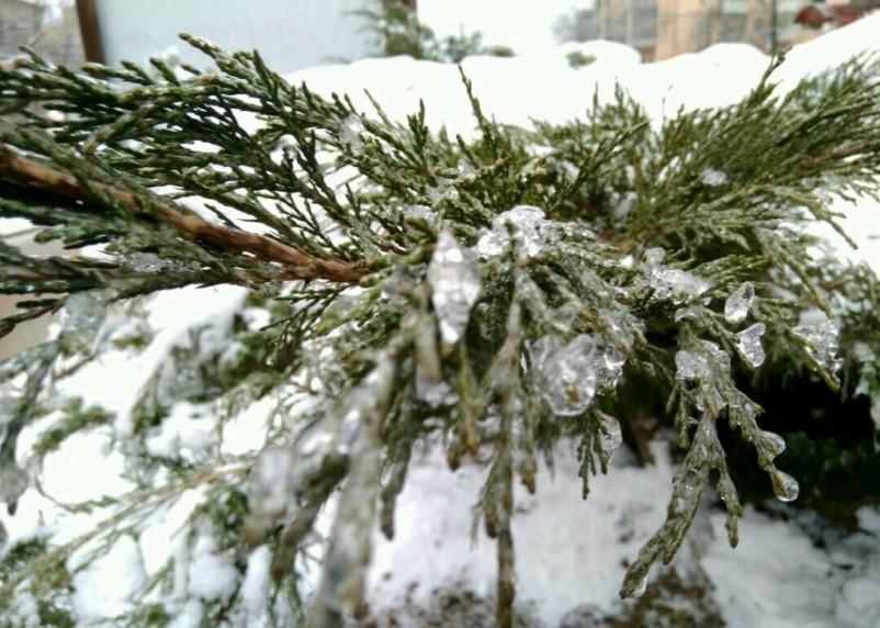 Смоленскую область 21 января накроют ледяные дожди